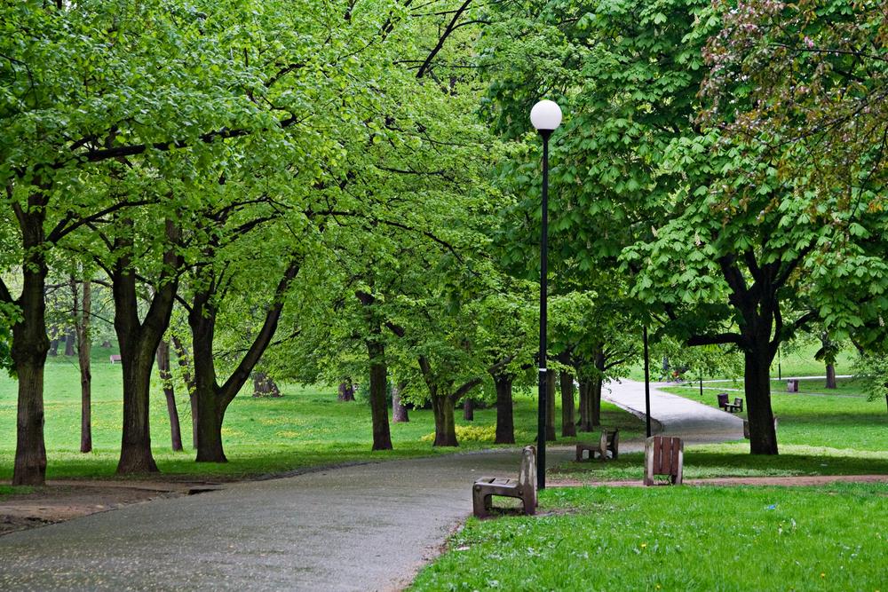 banc-dans-le-parc